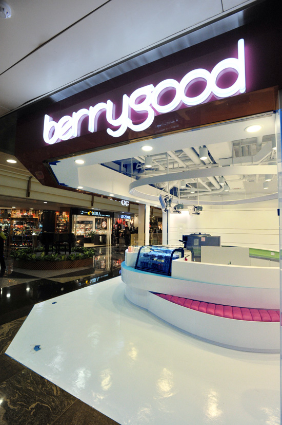 Berrygood Frozen Yogurt